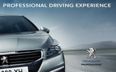 WORLDAPPEAL- PEUGEOT PROFESSIONAL DRIVING